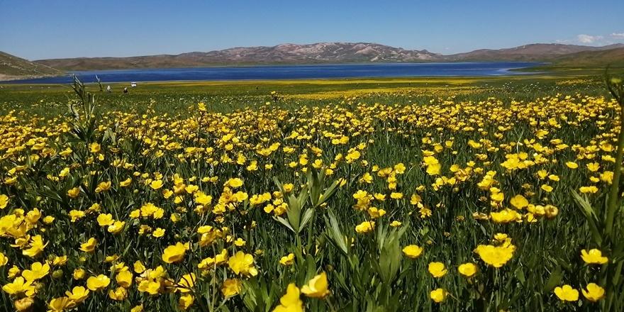 Urartular döneminden kalan Keşiş Gölü hayran bırakıyor 1