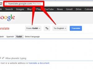Google Kürtçe uzman arıyor