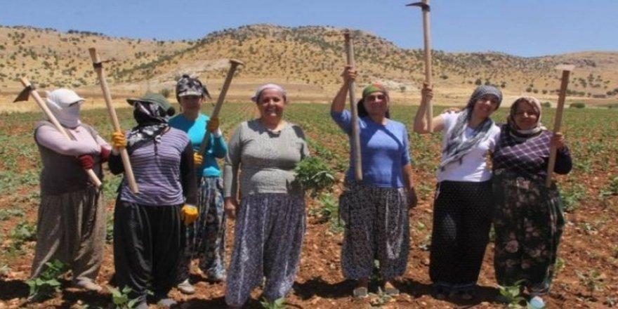 Özaydın'ın suçu: Kadınlarla yeşil fasulye ekmek