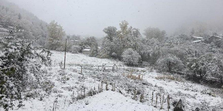 Erzincan'da kar yağışı: Bir çobanın cesedi donmuş halde bulundu