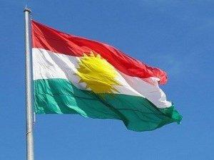 Kürdistan Bayrağı Gününde 'Savaşa Hayır, Siyasal Çözüme Evet' Diyoruz