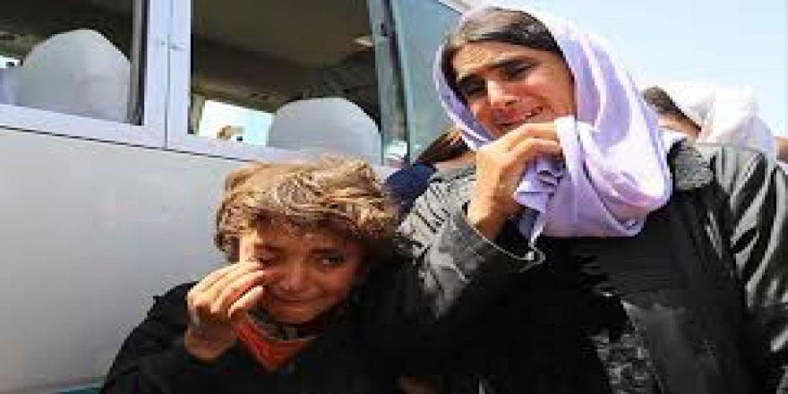 Mazlum Çetinkaya: Şengal'in suyu nereye akar!