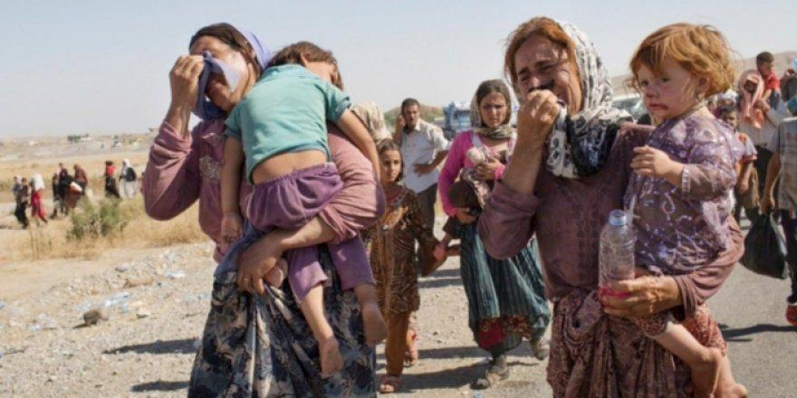 Nurcan Baysal yazdı: 73. Ferman'ın 6. yıldönümünde Ezidi çocukların acısı
