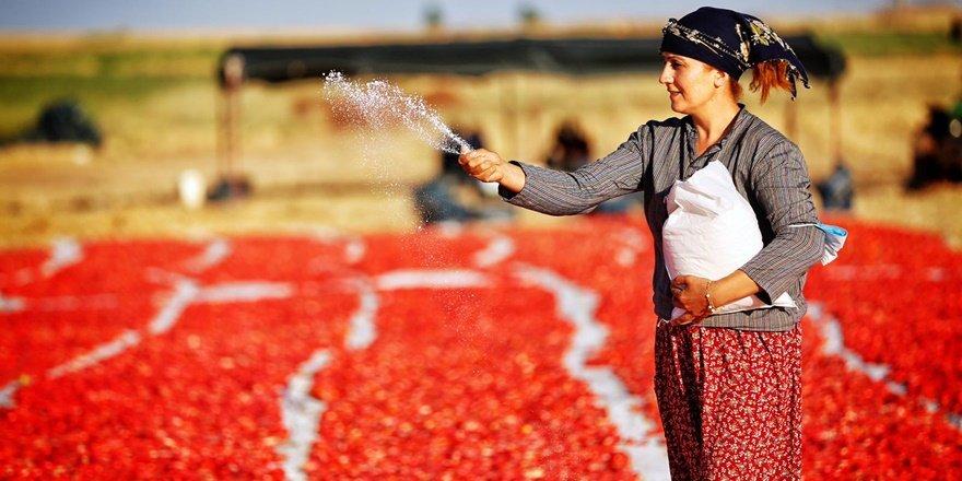 Avrupa'nın salçası Diyarbakırlı kadınlardan