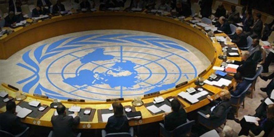 Birleşmiş Milletler 7 ülkenin oy hakkını askıya aldı