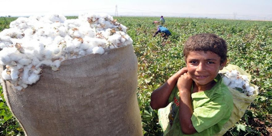 7 yılda 494 çocuk işçi iş cinayetlerinde hayatını kaybetti