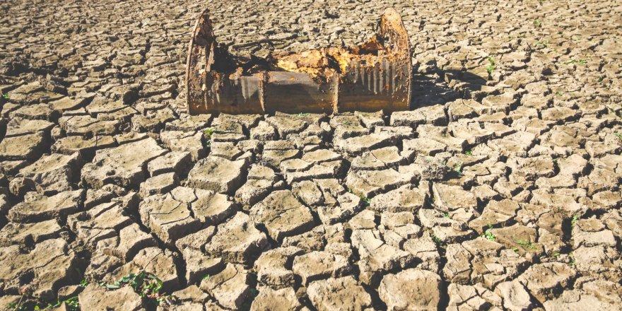 Suriye ve Rojava'da kuraklık uyarısı