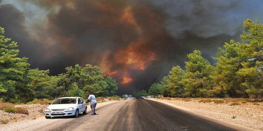 Türkiye ormanları bölge bölge yanıyor!