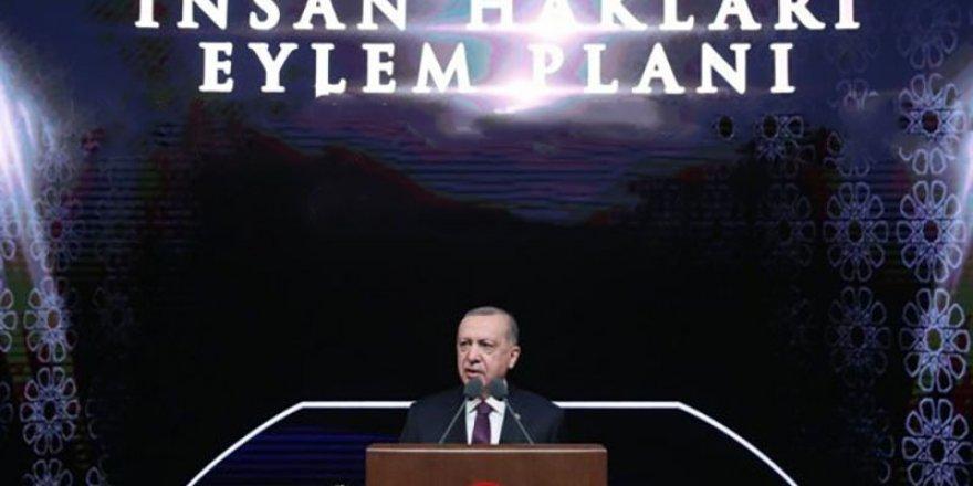 İnsan Hakları Eylem Planı'ndaki hedefler tutmadı