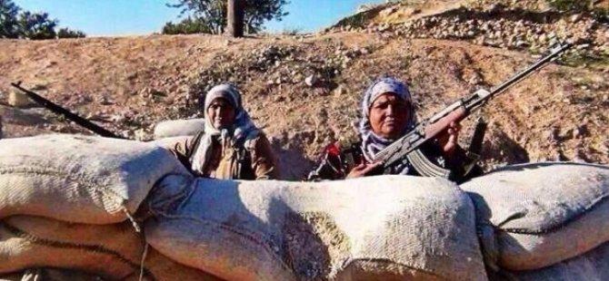 Kobani'de şehit sayısı 426