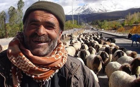 """""""Hayvancilık TSK ile PKK arasında sıkışıp kaldı"""""""