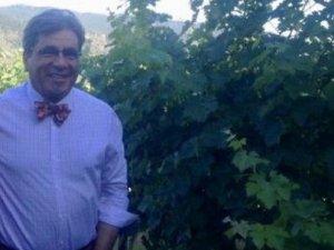 Kürt işadamı, ülke hasretiyle, Kürdistan'dan getirdiği taşlarla Kaliforniya'da çiftlik kurdu