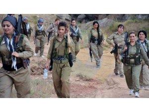 PDK-İ: İran'ın bombardımanı sonucu 2 Peşmerge şehit!
