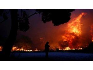 Yunanistan'da korkunç yangın: 60'tan fazla ölü