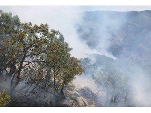 VİDEO- Dersim dağları alev alev...Müdahale edilmezse köyümüz yanacak!