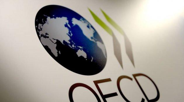 OECD: Türkiye'de ekonomisi 2019'da yüzde 2.6 küçülecek