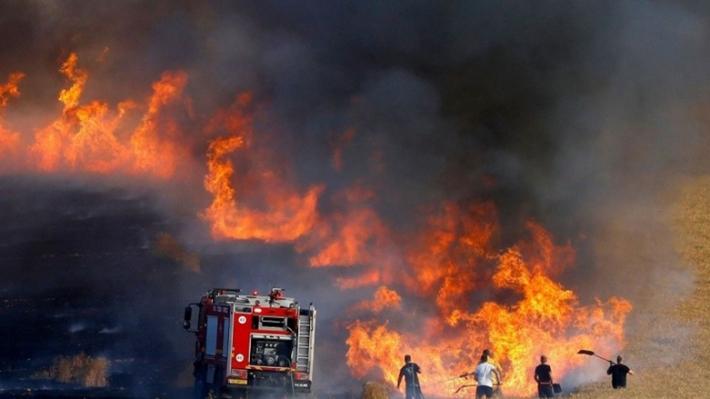 Germiyan'da da ekinler yakılıyor