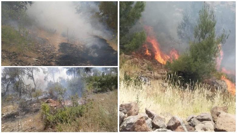 Efrin'in dağları ve ormanları ateşe veriliyor !