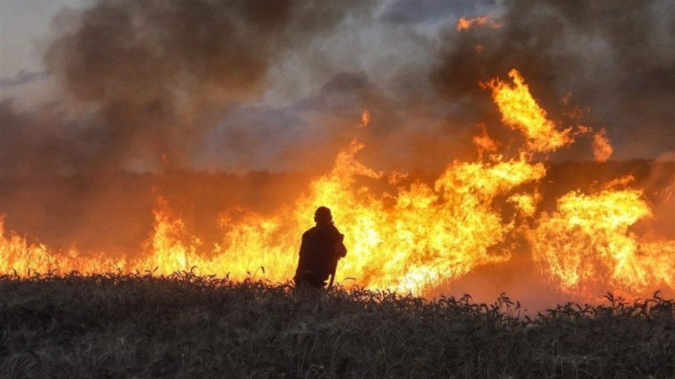 Şengal'de tarlalar ateşe veriliyor: 2 ölü