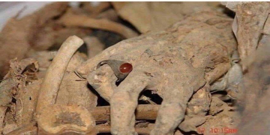 Yüzlerce Kürt naaşının bulunduğu toplu mezarlar açılıyor!