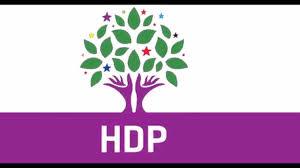 HDP:Türkiye, Suriye'nin İçişlerine Karışmamalı