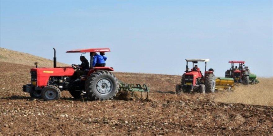 Kerkük'te Kürtlere ait binlerce dönüm tarım arazi Araplara verildi