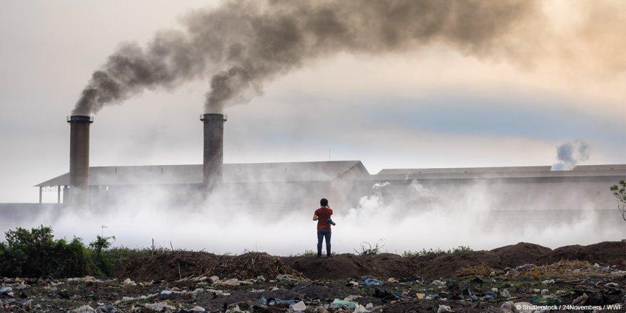 WWF-Türkiye: Hava kirliliği trafik kazalarından 7 kat fazla can aldı