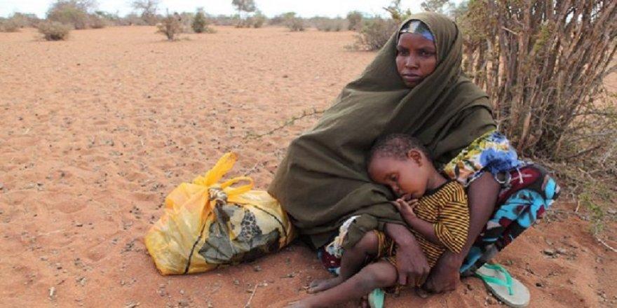 BM: Afrika'nın güneyinde 45 milyon kişi açlıkla karşı karşıya