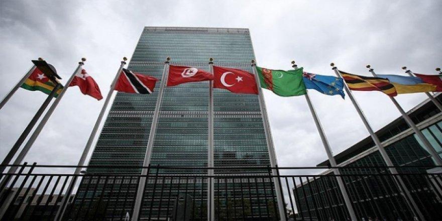 Türkiye BM'ye 'kuvvetler ayrılığı' ve 'demokrasi' iddiasıyla gidiyor