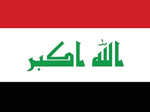 Irak'tan BMGK'ya Başika için acil toplantı çağrısı