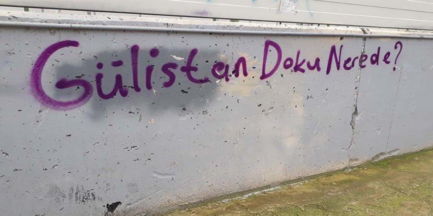Gülistan Doku 41 gündür kayıp